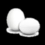 Logo-Eier-WEB.png