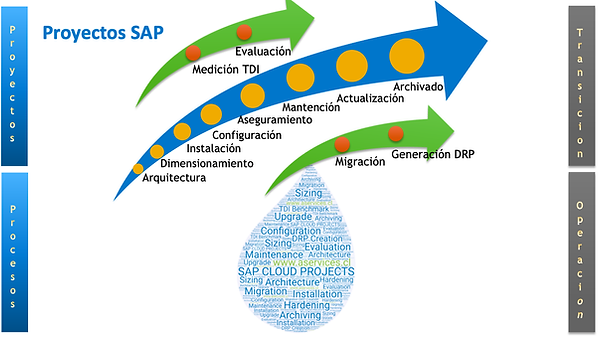 a_services_proyectos_sap_cloud.png