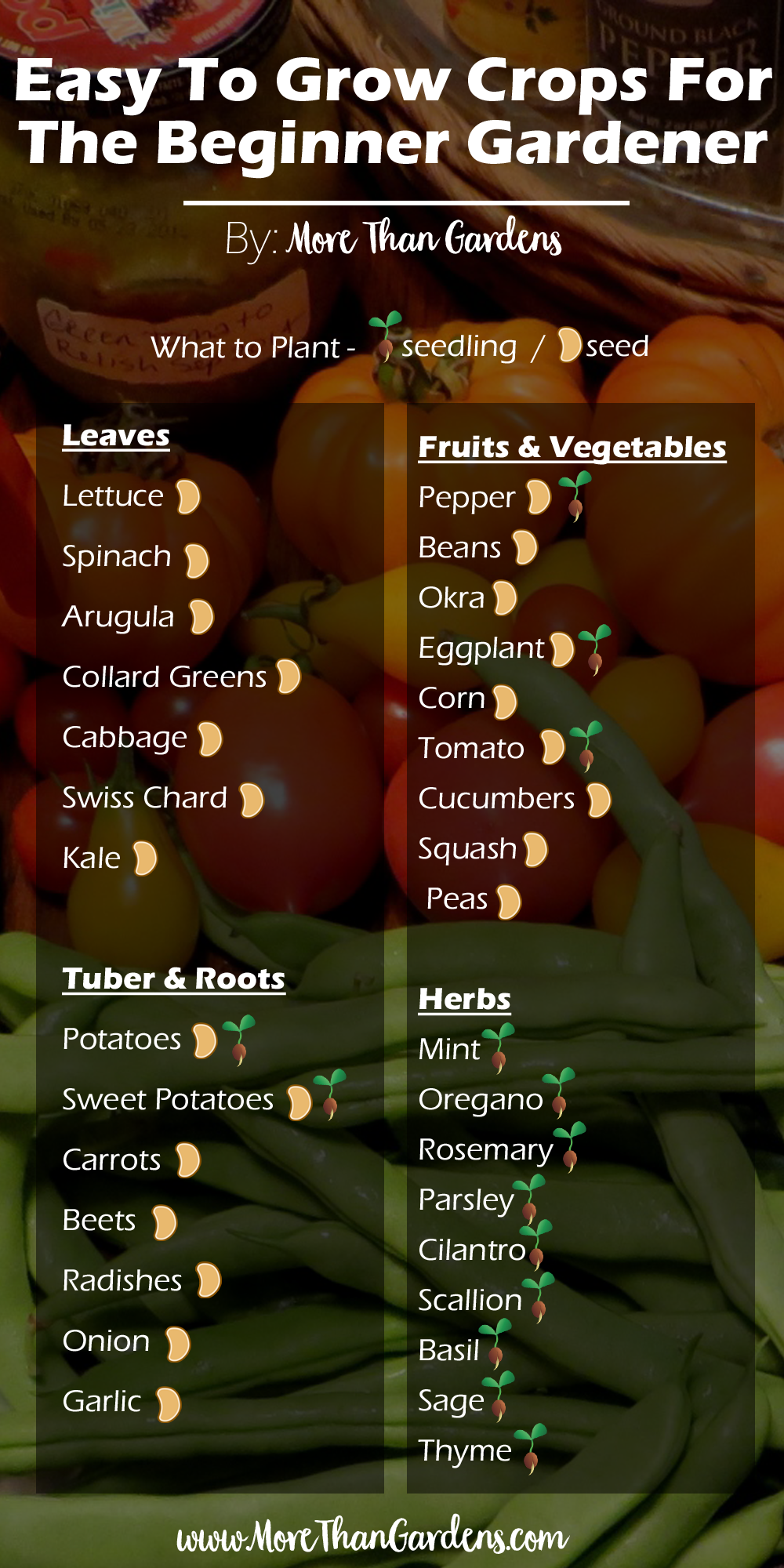 List of crops that are easy to grow for the beginner gardener