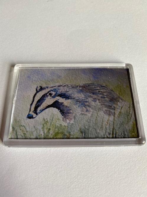 Badger Magnet (8)