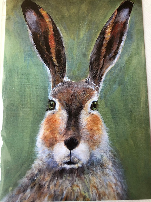Greeting Card - Hare