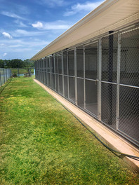 outside cages 3.jpg