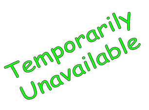 Temporarily Unavailable - Google Slides