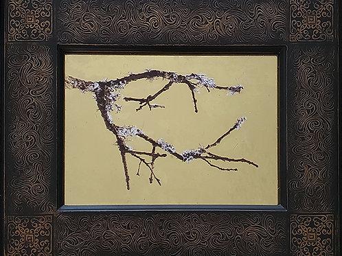 Gilded Light- Lichen
