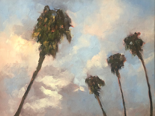 Sky Palms