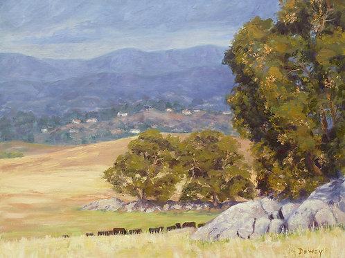 """Ramona Grasslands Oaks"" oil painting"