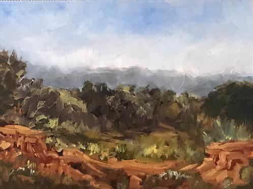 Torrey Pines II