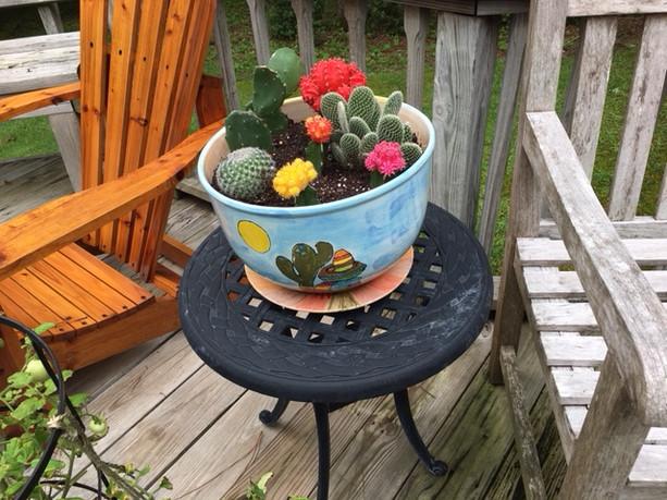 Giant mug as a planter!
