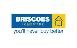 Briscoes (NZ Client)