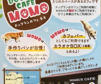 ドッグランカフェMOMOのショップカードが完成そました。