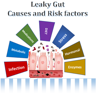 Leaky Gut. Have gut problems? Suspect leaky gut? Do not give up! We have solutions for you!