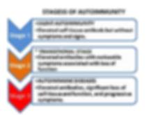 Three stages of autoimmunity