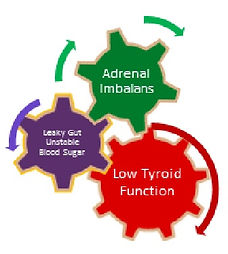 Impact of adrenal imbalance, leaky gut and blood sugar fluctuation on thyroid function