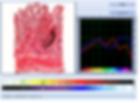 Metatron-Oberon bioanalyzer