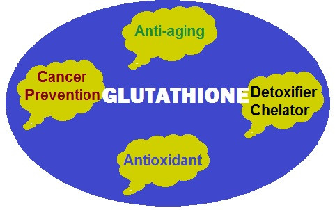 Start Reversing Aging and Support your Health with Glutathione