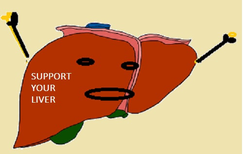 Healthy liver – strong body!