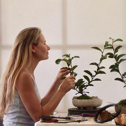 Leisa Russell nurturing bonsai.jpg