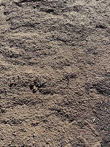 Topsoil Closeup.jpg