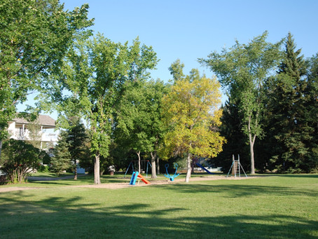 What do you want to see in Charles Simmonds Park?