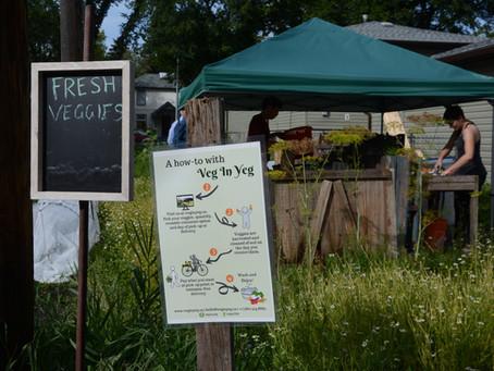 Garden project makes home in McKernan