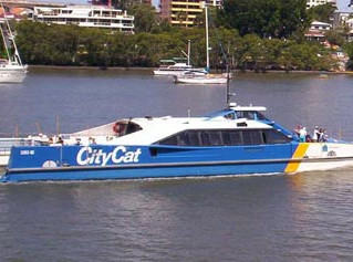 Brisbanes Iconic City Cats