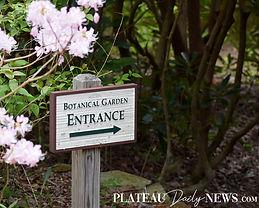 Botanical.Garden (5).jpg
