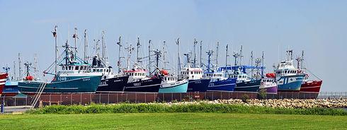 fishing-boats-2397029.jpg