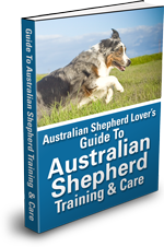 australian-shepherd-book-150.png