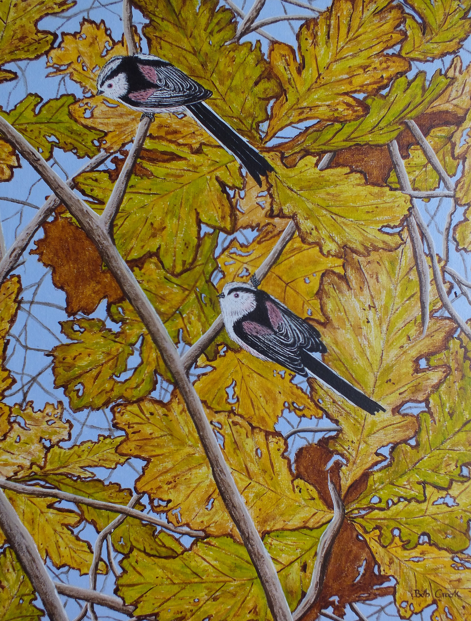 Long tailed Tits in Autumn