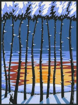 woodland winter 2