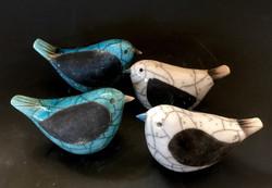 SFS Birds