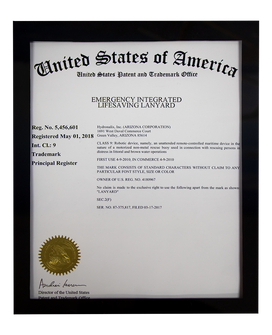 USA patent&trade copy.png