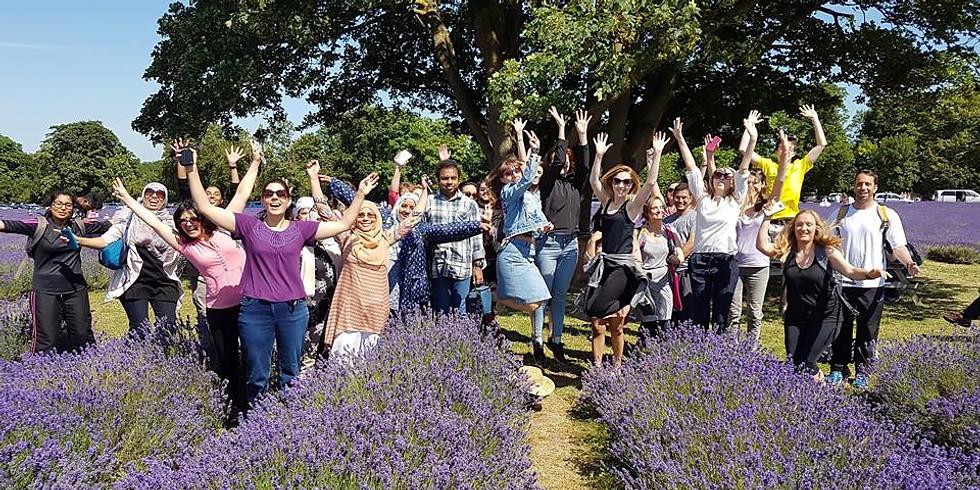 Lavender Farm Hike