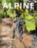 2019 Fall Issue - Alpine Chamber Magazin