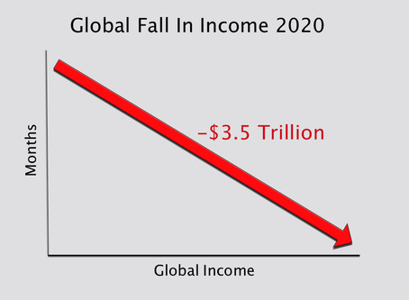 The Income Fall of 2020
