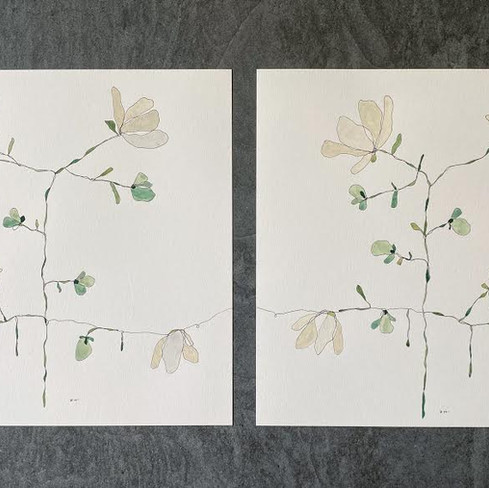 """16"""" x 16"""" each   watercolor and ink on paper"""
