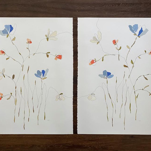 """22"""" x 30"""" each   watercolor and ink on paper"""