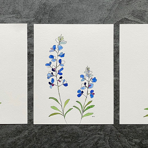 "8"" x 10"" each 