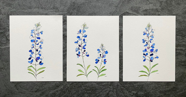 """10"""" x 12"""" each 