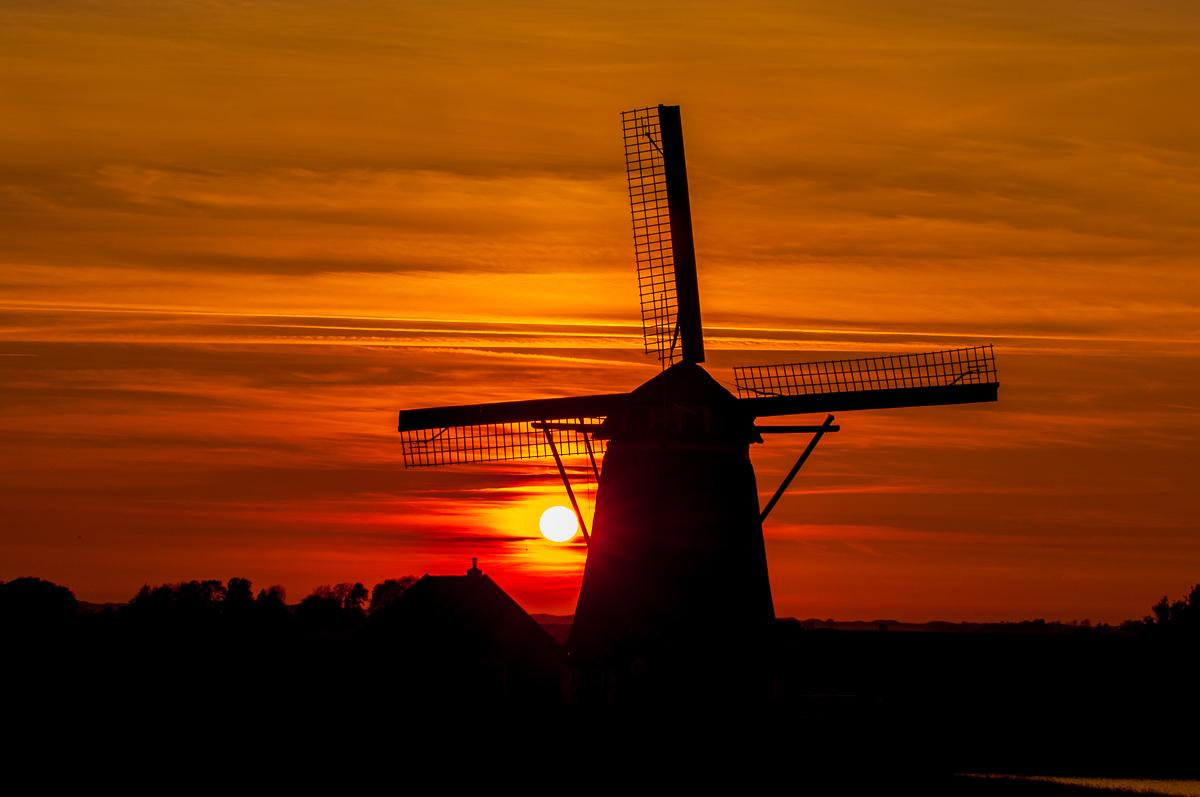 Texel © Ingo Gerlach_IWG9809