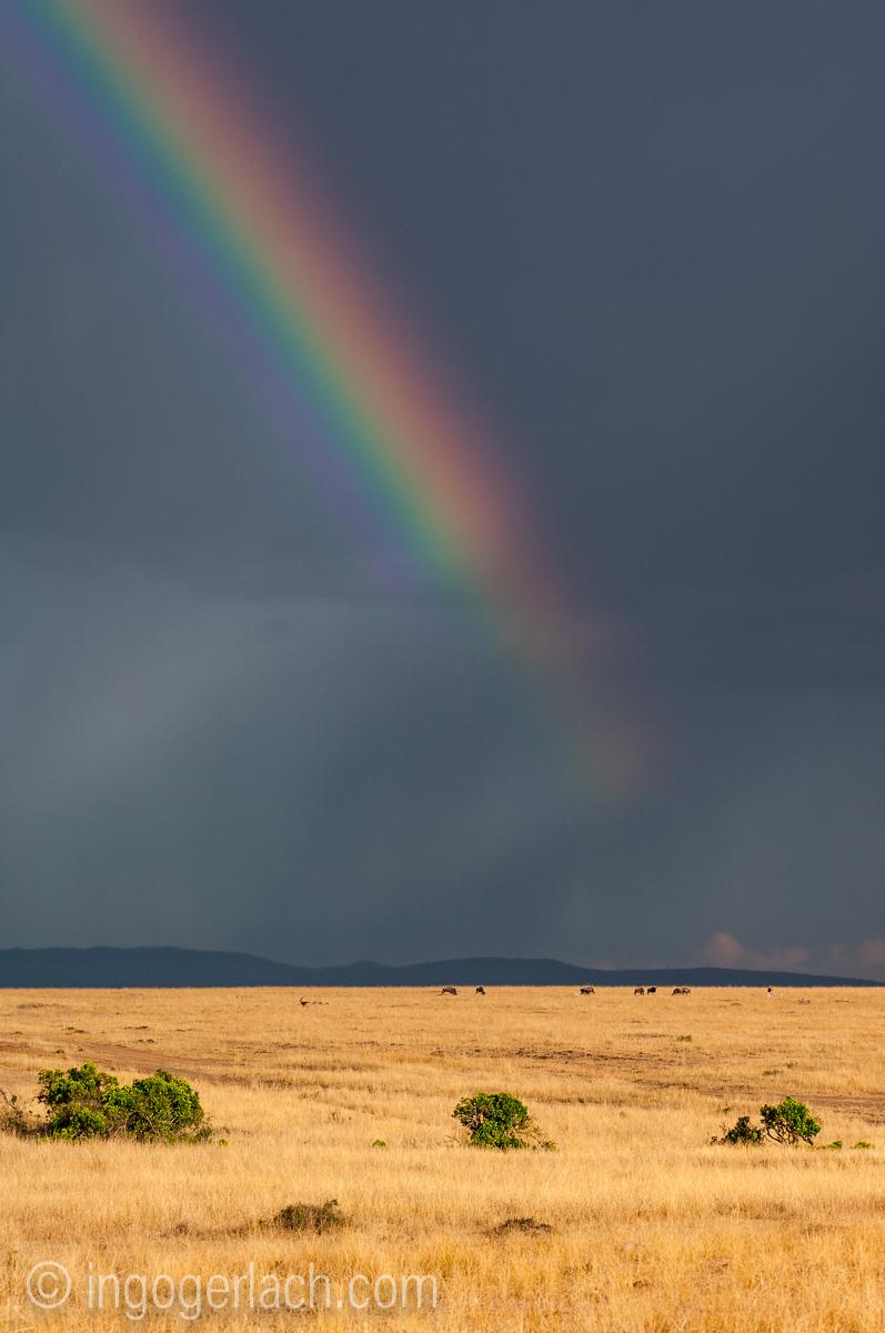 Over the Rainbow_IWG0145