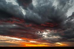Masai Mara © Ingo Gerlach_IGB6411