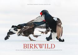 Kalender Birkwild