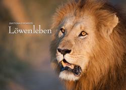 Kalender Löwenleben