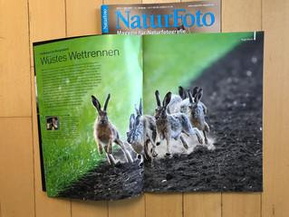 Doppelseite im Naturfoto-Magazin 04/2020