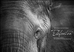 Kalender Elefanten in Schwarzweiß