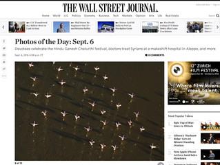 Wall Street Journal zum 2. Mal...
