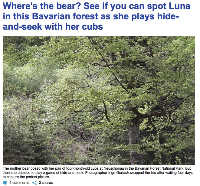 Daily Mail vom 28.5.2016