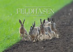 Kalender Feldhasen