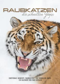 Kalender Raubkatzen schnelle Jäger